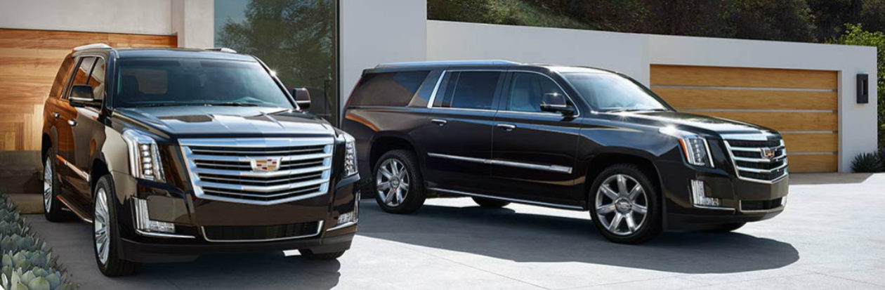 Star Limo Executive Car Service